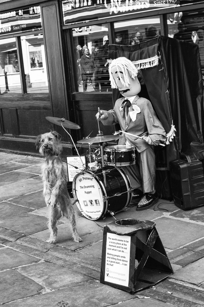 chester street photo mr peewee drumming puppet and performing dog fuji x100t